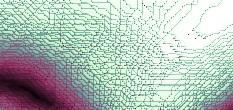 internet molekulare